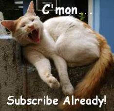 Fluffy says Subscribe Already
